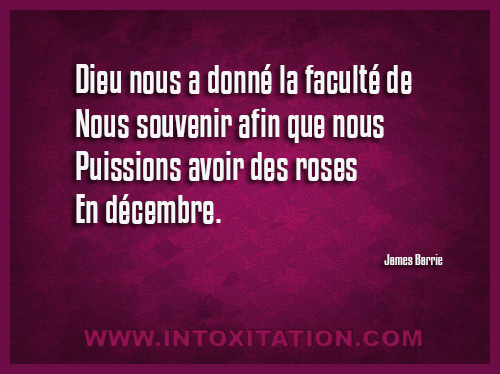 Citation Souvenir Citations Et Proverbe Souvenir Page 2