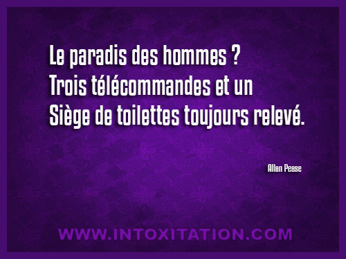Citation : Le paradis des hommes ? Trois télécommandes et un siège de toilettes toujours relevé.