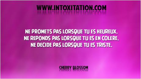 Citation : Ne promets pas lorsque tu es heureux. Ne réponds pas lorsque tu es en colère. Ne décide pas lorsque tu es triste.